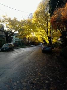 SalmonStreet11-21