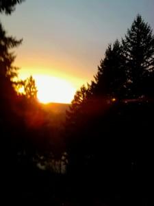 Mt. Tabor, Portland