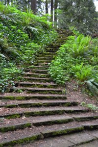 Old stairways in Washington Park, Portland. Photo credit: alaskagirlatheart.com