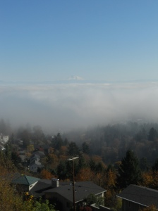 Mt. Hood from Pittock Mansion. Portland, OR