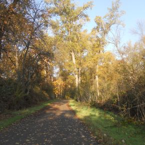 Find Your Place: Musings from the Bear Creek Greenway — Hike and GoSEEC!